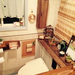 トイレ/タンクレストイレ/DIY/トイレのインテリア 掃除のしやすさと見た目のスッキリ感から憧…