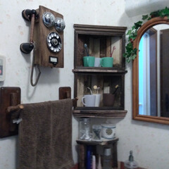 DIY/100均DIY 我が家の洗面台は備え付けの洗面台が無いの…(1枚目)
