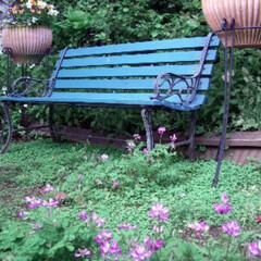 庭/ベンチ/ペイント/コンテスト/100円グッズ/水性ペンキ/... なんの変哲も無いお庭のベンチを、空色にペ…