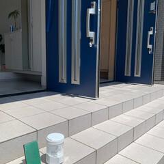日本初上陸 3,500万本販売 無添加 あの洗剤 除菌 漂白 消臭 700g 多目的洗剤 粉末 4種の酵素 重曹 クエン酸 LOHA(粉末洗剤)を使ったクチコミ「今日は天気がいいので玄関のタイルを洗いま…」