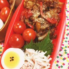 お弁当/ランチ 豚バラ焼肉丼 ごぼうサラダ ゆで玉子 ミ…