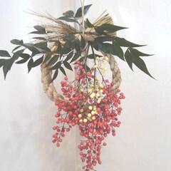 南天/正月飾り 父手作り🎍正月飾りありがとう😊