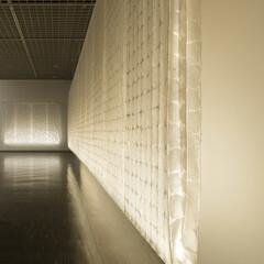 MOMAT/光/空気/膜/浮遊感/透明感/... 東京国立近代美術館 「現代のプロダクトデ…