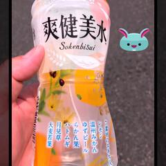 飲み物 新発売。 サッパリしてて美味しいよー(^…