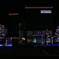 クリスマスイルミネーション  株式会社MARUWA本社のクリスマスイ…(1枚目)
