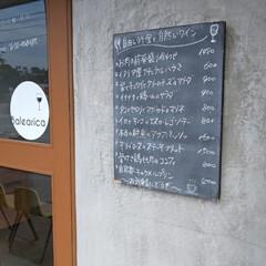 フレッシュワイン/ビストロ/おでかけ/暮らし 文化の日 古本市に出かける前、ビストロに…