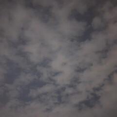 夜空/自然/発見/暮らし 仕事終わりの空。大理石風な模様でした。