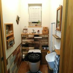 腰壁風/マスキングテープ/トイレ/DIY/雑貨/100均 1階のトイレ。 ここは普通よりちょっと広…
