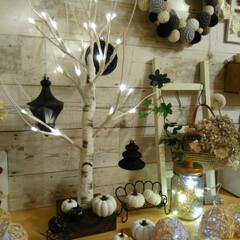 かぼちゃ/かぎ編み/編み物/ハロウィン/100均/雑貨/... クリスマスにも使えるニトリのLED白樺ツ…