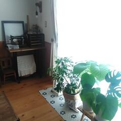 キッチンマット/インテリア/interior/DIY/ハンドメイド/100均/... 我が家の床材は無垢のパイン材ですが、窓際…
