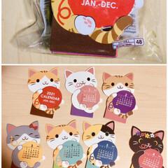 卓上カレンダー/カレンダー2021/カレンダー/猫カレンダー/ネコ/猫/... またまたダイソーにて来年の 猫ちゃんカレ…