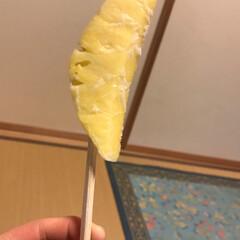 パイナップル/ペット/はじめてフォト投稿 パイナップル棒です! ただパイナップルを…