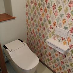 トイレ/トイレリフォーム/Panasonic/パナソニック/アラウーノ/タンクレス/... 千葉県市川市のトイレリフォーム施工事例で…