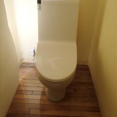 トイレ/トイレリフォーム/TOTO/トートー/ウォシュレット/白/... 千葉県千葉市のトイレリフォーム事例です。…