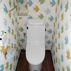 トイレ/トイレリフォーム/LIXIL/INAX/リクシル/イナックス/... 神奈川県相模原市のトイレリフォーム事例で…