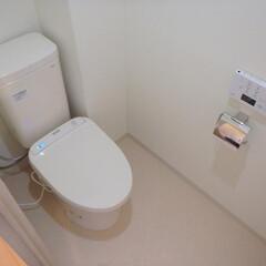 トイレ/トイレリフォーム/TOTO/トートー/ウォシュレット/アプリコット/... 神奈川県横浜市のトイレリフォーム事例です…