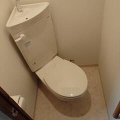 トイレ/トイレリフォーム/和式トイレ/TOTO/トートー/白/... 東京都府中市のトイレリフォーム事例です。…