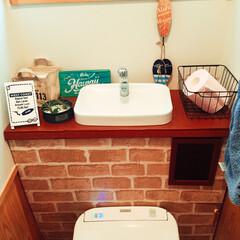 プラダン/タンクレス風/トイレ/DIY/100均 ホームセンターのプラダンと、100均の壁…