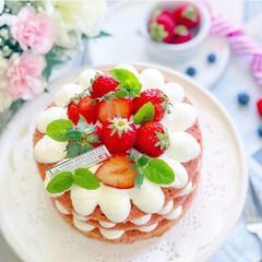 ショートケーキ/デコレーションケーキ/苺スイーツ/手作りおやつ/スイーツ/手作りスイーツ/... 苺のネイキッドケーキ🎂