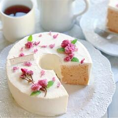 春スイーツ/シフォンケーキ/手作りケーキ/手作りおやつ/手作りスイーツ/春のフォト投稿キャンペーン/... 桜のシフォンケーキ🌸🎂  生地の中には …
