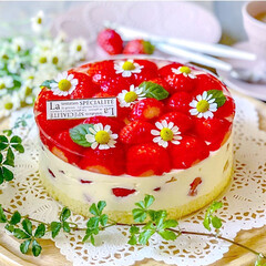 いちごケーキ/苺スイーツ/おやつ/手作りスイーツ/スイーツ/手作りおやつ/... 苺ティラミスと苺ゼリーケーキ🎂 2つの味…