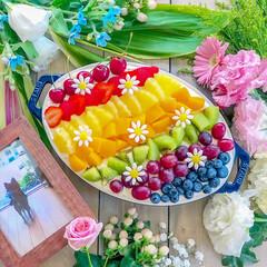 手作りスイーツ/フルーツ/おやつ/手作りおやつ/虹色スコップケーキ/スコップケーキ/... 虹色スコップケーキ🌈 7種類のフルーツを…