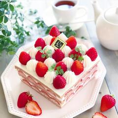 いちごケーキ/苺のケーキ/スクエアケーキ/ケーキ/おうちカフェ/手作りスイーツ/... 苺のスクエアケーキ🍓