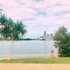 公園/おさんぽ/HERO🐶くん/黄昏/ペット/犬 昨日近くのいつもの⛲️公園へお散歩🐾🐾 …