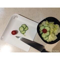 きゅうり/ミニトマト/レタス/IKEA/黒/お皿/... ダイソーの新商品の ちょっと切るのに役立…