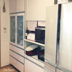 キッチン/カップボード/建て付け/ピンク/タカラスタンダード/ブレットケース/... キッチン背面です。 建て付けはいいです。…