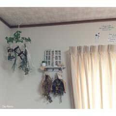 フェイクグリーン/ドライフラワー/DIY/窓枠風/カーテン/ウォールシール/... ごちゃごちゃになりがちな私が 唯一色を抑…