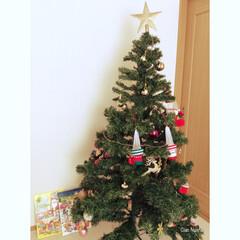 クリスマスツリー/アドベントカレンダー/チョコレート/カルディ/ニトリ/キラキラ/... クリスマスツリー  後ろにあるのは 初の…