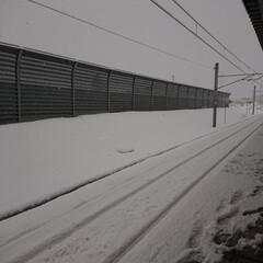 雪国/雪景色 07:00現在、積雪18cmの氷の市街地…