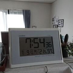 気温/冬越し/冬籠もり 最低気温 15℃ 最高気温 18℃ 朝の…