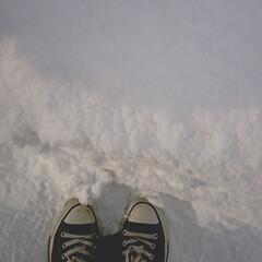雪/雪国/季節感/雪景色 後悔と反省。