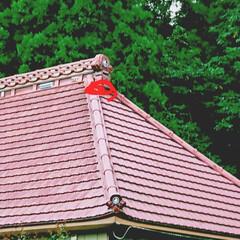 屋根/まじない/火防 民家屋根の鬼板などに「水」字。 火防せの…