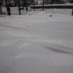 雪/雪国/季節感/雪景色 後悔と反省。(2枚目)
