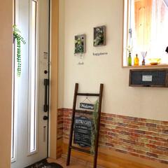 ラダー/スチールプレート/新商品/DIY/ニトリ/玄関/... ニトリで買ったスチールプレートを手作りラ…(1枚目)