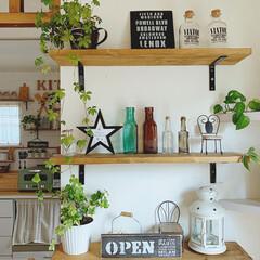 カフェ風インテリア/DIY女子/棚DIY/観葉植物のある暮らし/観葉植物/ナチュラル雑貨/... ダイニング付近の棚になります ☺︎ …