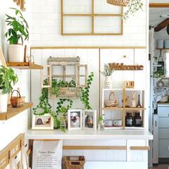リミアな暮らし/観葉植物のある暮らし/観葉植物/緑のある暮らし/木のぬくもり/窓枠風diy/... わんこroomのトイレ部分の上にある 造…