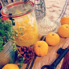 生活雑貨 庭の柚子を使って・・・自家製柚子茶。 柚…