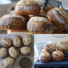 プティポッシュ/小物/樹脂粘土/粘土/フェイクパン/ミニチュアフード/... セミハードパンが焼き上がりました🎵 外は…