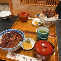 鰻丼/グルメ/ペット/おでかけ 今日は三重県まで鰻食べに行きました。 最…