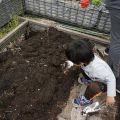 屋上菜園/土づくり/虫/浜田山/コミュニティ賃貸 お母さんを手伝って土づくり!虫が出てきて…