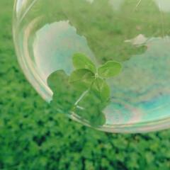 色/景色/綺麗/空/自然 🍀 + 🌼 = 💛💜💙  自然が好き。