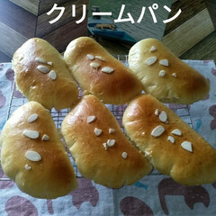 パン作り大好き/パン作り  パン作り😋  ★パン作りが楽しくなる本…(5枚目)