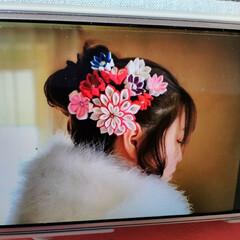 髪飾り/つまみ細工/成人式 今日は成人式   私の姪もたった今会場へ…