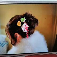 髪飾り/つまみ細工/成人式 今日は成人式   私の姪もたった今会場へ…(2枚目)
