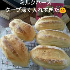 パン作り大好き/パン作り  パン作り😋  ★パン作りが楽しくなる本…(1枚目)