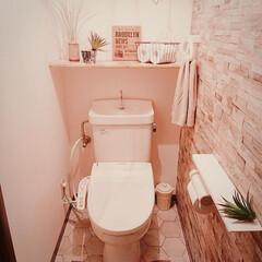 リメイクシート/フェイクグリーン/現状回復可/賃貸/トイレ/つっぱり棒用棚/... 賃貸トイレに 棚がなかったので ダイソー…